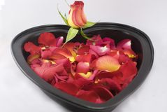 Rose cake. Many of rose petals in a baking tin Stock Photo
