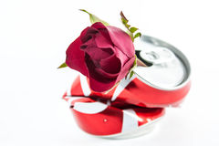 Rose and a can Royalty Free Stock Photo