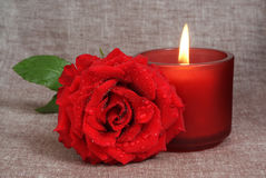 Rose and candle Royalty Free Stock Image