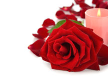 Rose and candle Stock Images