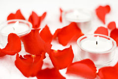 Rose and candles. In composition on white background Stock Photography