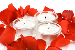 Rose and candles. In composition on white background Royalty Free Stock Photos