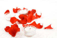 Rose and candles. In composition on white background Stock Photo
