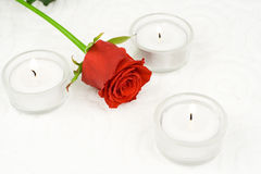 Rose and candles. In composition on white background Royalty Free Stock Images