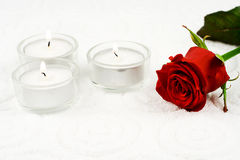 Rose and candles. In composition on white background Royalty Free Stock Image