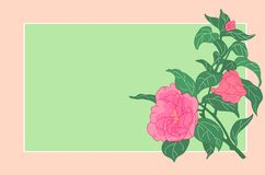 Rose card Stock Images