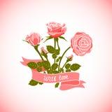 Rose Card Fotografie Stock Libere da Diritti