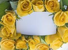 Rose Card Stock Afbeelding