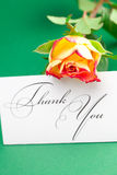 Rose and card signed thank you Royalty Free Stock Photos