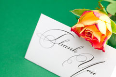 Rose  and card signed thank you Stock Photos