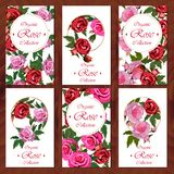 Rose card on wooden background Stock Images