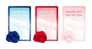 Rose cards. Vector: rose cards, blue and red Stock Image