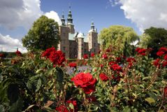 Rose and castle Stock Image