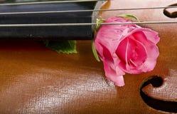 Rose on cello Stock Photo