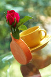 Rose in ceramic vase Royalty Free Stock Photos