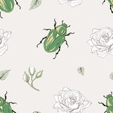 Rose chafer seamless pattern Royalty Free Stock Images