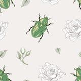Rose chafer seamless pattern. Hand drawn rose chafer seamless pattern vintage engraving style stock illustration