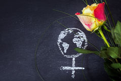 Rose and a chalk drawn female sign with earth globe on a blackbo Stock Photography