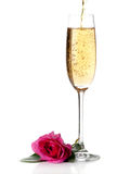 Rose and champagne wine isolated Royalty Free Stock Photography