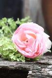 Rose chic minable et hortensia Photo stock