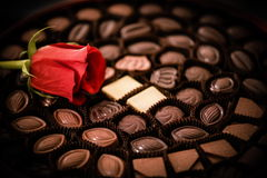 Rose and chocolates Royalty Free Stock Image