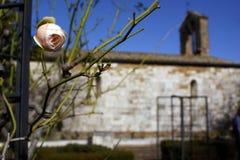 Rose church Royalty Free Stock Photo