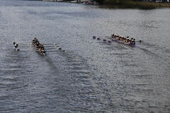 Rose City Rowing (left) and Mount Saint Joseph (right) races in the Head of Charles Regatta Women's Youth Eights Stock Photo