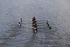 Rose City Rowing-rassen in het Hoofd van de Jeugd Eights van Charles Regatta Women royalty-vrije stock fotografie