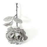 Rose with clipping path Stock Photos