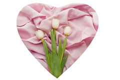 Rose cloth with folds and white tulips on it Stock Photos