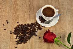 Rose and coffee beans Stock Image
