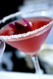 Rose a coloré martini salé Image libre de droits