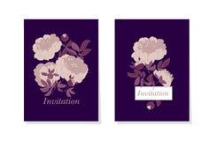 Rose color peony flower on black background vector illustration. Sketch hand drawn floral pattern for card, wedding invitation, surface design Stock Images
