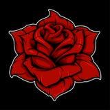 Rose color version vector illustration