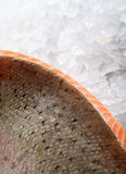 Rose coloreó los pescados, alimento del verano con el adobo del vino del limón Imágenes de archivo libres de regalías