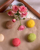 Rose and colored macaroon Stock Image