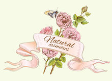Rose colorful natural banner. Royalty Free Stock Photos