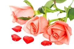 Rose con descensos del agua y de los corazones cerca Foto de archivo