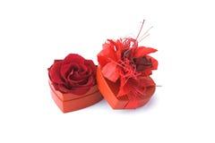 Rose con il contenitore di regalo Immagini Stock