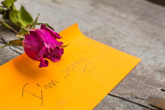 Rose condolences Royalty Free Stock Photos