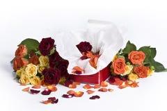 Rose in contenitore di regalo Immagine Stock Libera da Diritti