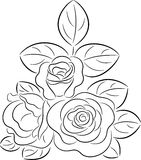 Rose contour Royalty Free Stock Photos