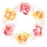 Rose in corona della decorazione dell'acquerello della fioritura Fotografie Stock Libere da Diritti