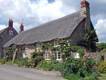 Rose a couvert la maison couverte de chaume Photographie stock libre de droits