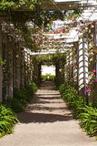 Rose Covered Arbor Image stock