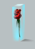 Rose and crystal Stock Photography