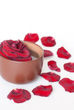 Rose in cup. And petals on white background Stock Photo