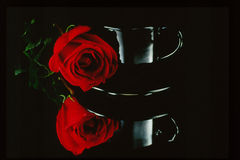 Rose and Cup. Studio shot of a black cup and red rose  with reflection Stock Photos