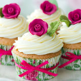 Rose cupcakes stock photos