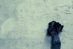 Rose d'annata con gli ambiti di provenienza del muro di mattoni Fotografia Stock Libera da Diritti